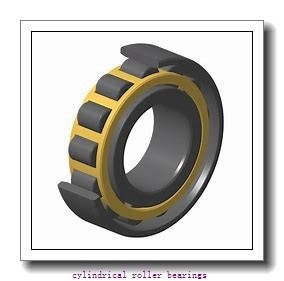 1 Inch | 25.4 Millimeter x 1.75 Inch | 44.45 Millimeter x 3 Inch | 76.2 Millimeter  CONSOLIDATED BEARING 96548  Cylindrical Roller Bearings