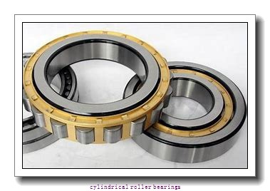 1 Inch | 25.4 Millimeter x 1.625 Inch | 41.275 Millimeter x 2.5 Inch | 63.5 Millimeter  CONSOLIDATED BEARING 95540  Cylindrical Roller Bearings