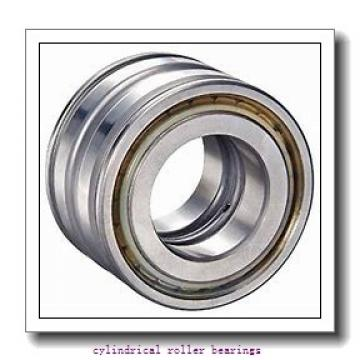 1.25 Inch | 31.75 Millimeter x 1.875 Inch | 47.625 Millimeter x 2.25 Inch | 57.15 Millimeter  CONSOLIDATED BEARING 95736  Cylindrical Roller Bearings