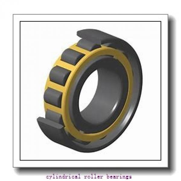 1 Inch | 25.4 Millimeter x 1.75 Inch | 44.45 Millimeter x 2.25 Inch | 57.15 Millimeter  CONSOLIDATED BEARING 96536  Cylindrical Roller Bearings #1 image