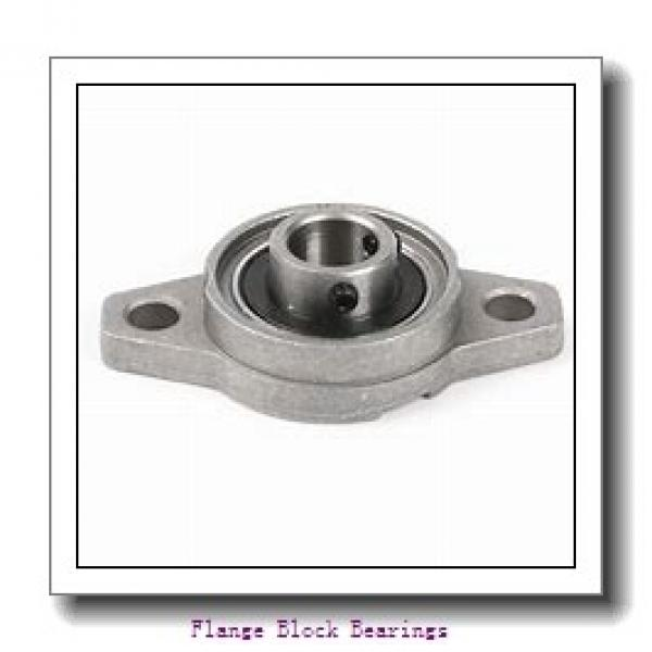 QM INDUSTRIES QVFLP19V085SM  Flange Block Bearings #2 image